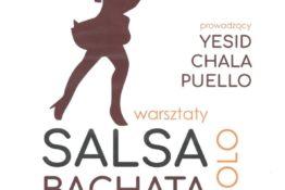 salsa (2)1